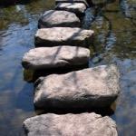Der buddhistische Weg